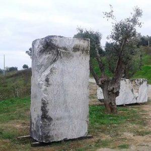 steineundolivenbaum